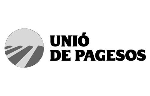 Romeu-Prenafeta-Agència-de-màrqueting-digital-Lleida-romeuprenafeta