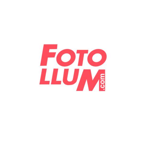 FOTOLLUM